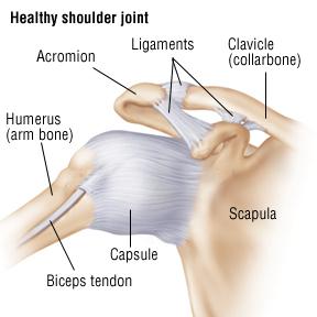 The Shoulder Practice Cape Town Shoulder Conditions
